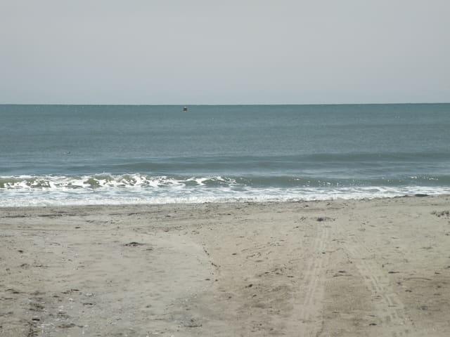 4th Floor Ocean View, GREAT ! Couples Get-A-Way ! - Myrtle Beach - Condominium