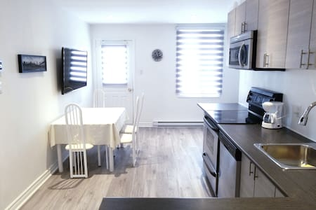 Cosy & Bright Apartment near Old Port Montreal