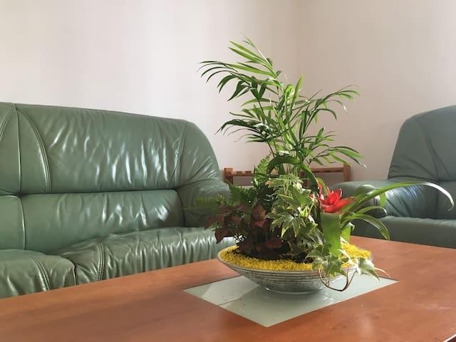 Una habitación céntrica cómoda-Campo San Francisco - Salamanca - Apartment
