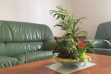 Una habitación céntrica cómoda-Campo San Francisco - Salamanca - Apartemen