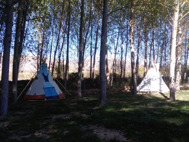 Tipi wichita albergue berlanga - Berlanga de Duero - Tenda Indígena