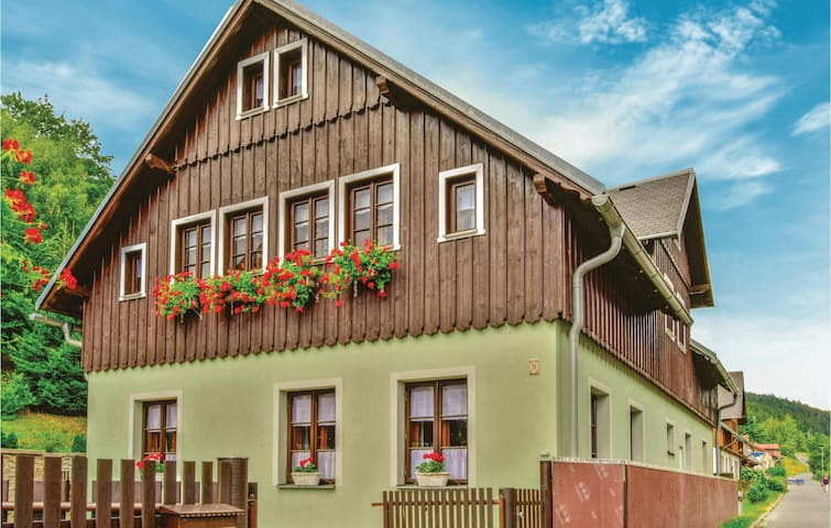 Holiday cottage with 6 bedrooms on 236m² in Horni Marsov