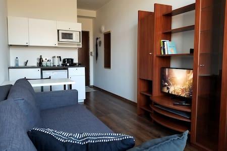 Cozy mini loft type apartment
