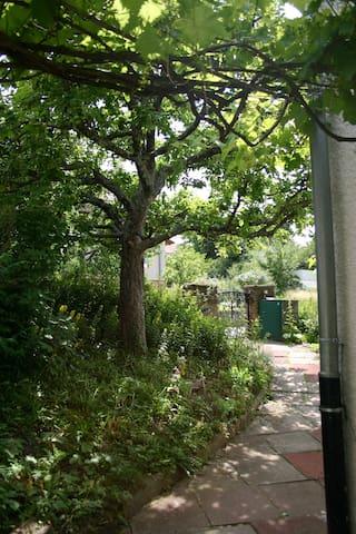 Zu uns geht man zuerst unter einem alten Apfelbaum durch.