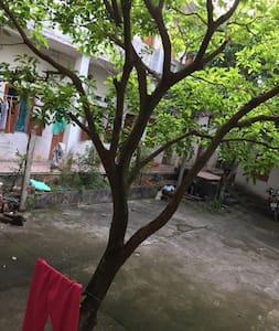 Resort Tran hung Dao Phan chu