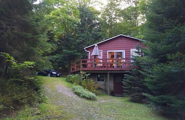 Cozy cottage in Muskoka Ont on Little long lake