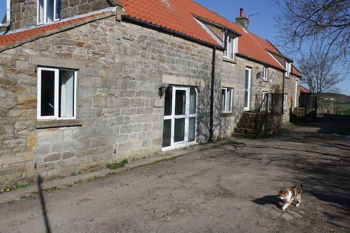 foxglove cottage - Lealholm - Apartment