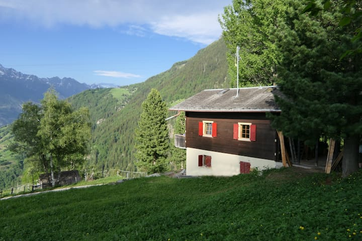 Holidays & Fun Family Chalet 2-5 swissalps 1400alt