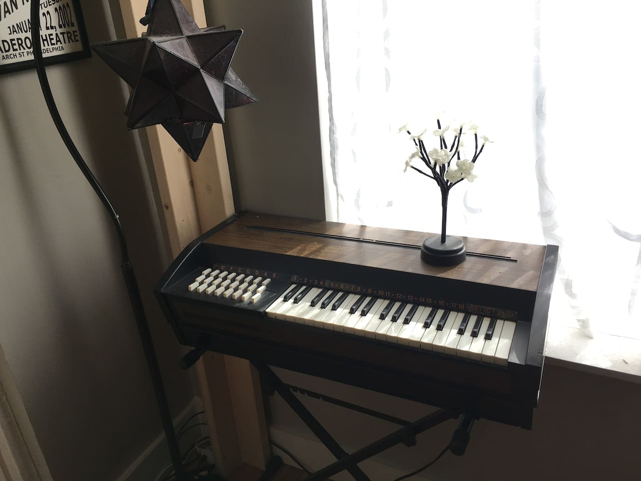 Vintage Reed Organ for your musical pleasure!