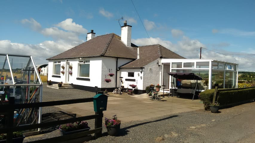 Country bungalow near St Andrews. Ideal for golf. - Fife - Bungalow
