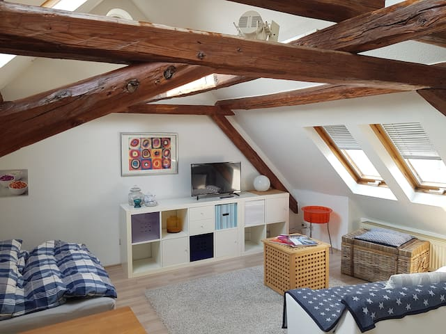 Eschborn - helles DG-Studio 40 qm mit Terrasse