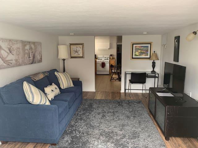 Spacious 1 bedroom ground floor apt in duplex