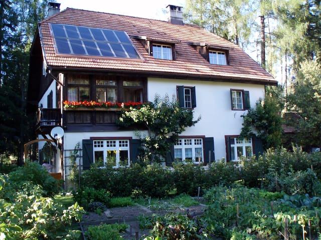 Villa Glauber - appartamento Antelao