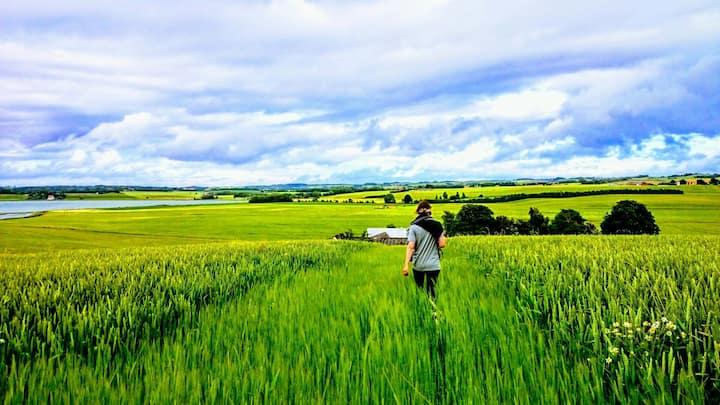 "★ Explore Danish ""hygge"" at rustic land idyll ★"