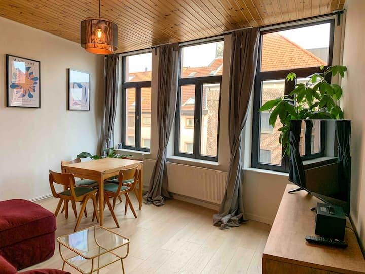 Newly renovated appartment in city centre for 6