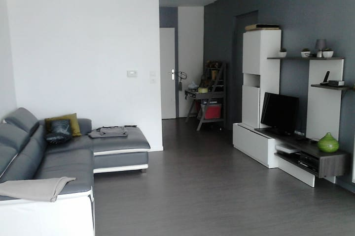 Chambre ou appartement entier - Lille - Flat