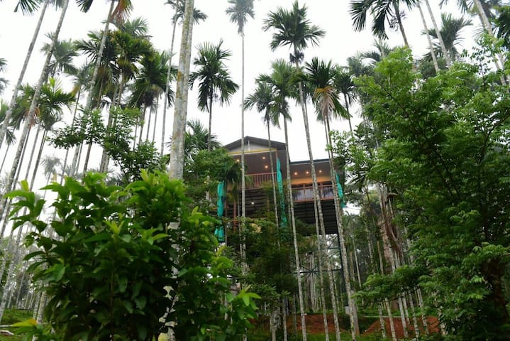 PILLAR HOUSE STAY NEAR FOREST AND RIVER AT WAYANAD