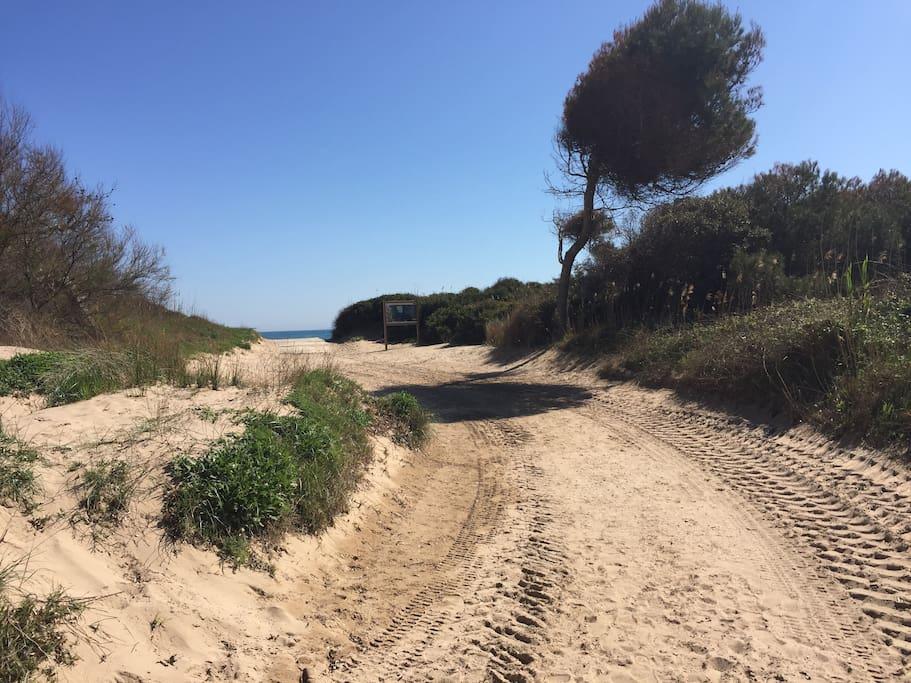 Plage de la Badine, 1 minute à pied! (La Badine beach, 1 minute walk!)