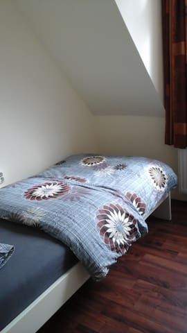 Private room center Haarlem near Amsterdam - Haarlem - Huis