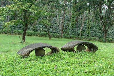 Explore, Dream and Discover at Shyara Land - Kadanga Marur