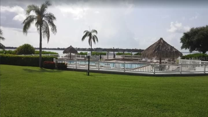 Palm De Mer