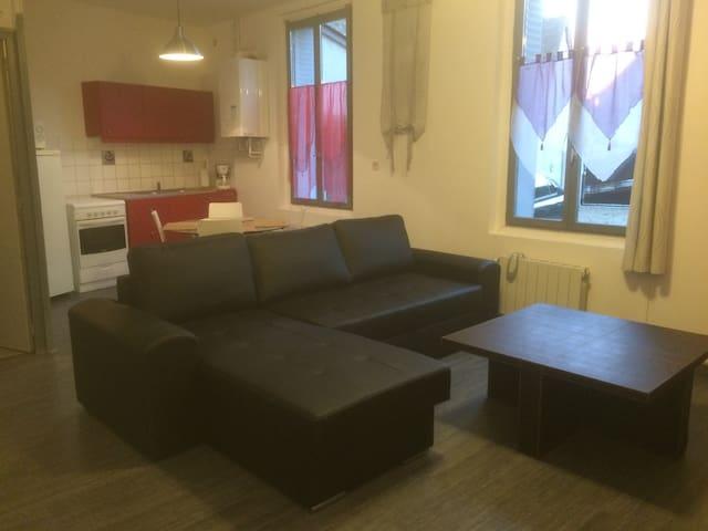 Amboise, appartement l'Amboisien - Amboise - Apartemen