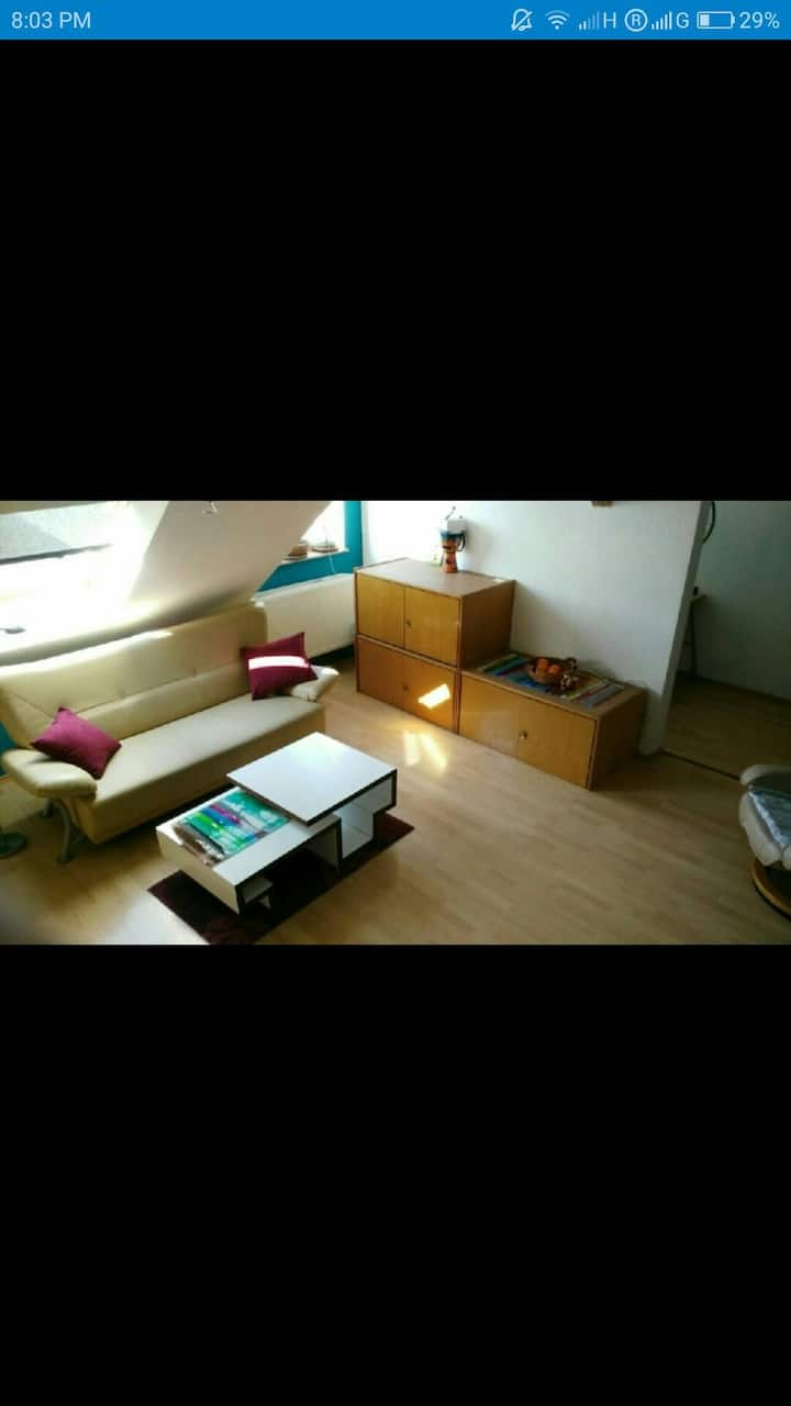 Second Room in the best rated Apartment in Dessau