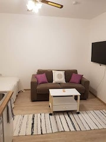 Nice studio apartment in Tartu with Netflix
