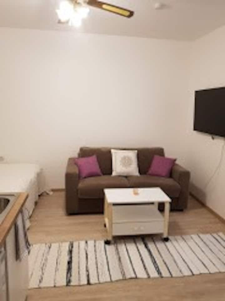Nice studio apartment in Tartu with Netflix