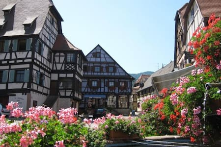 Beautiful apartment, Design, sunny, terrace 15m² - Dambach-la-Ville - 公寓