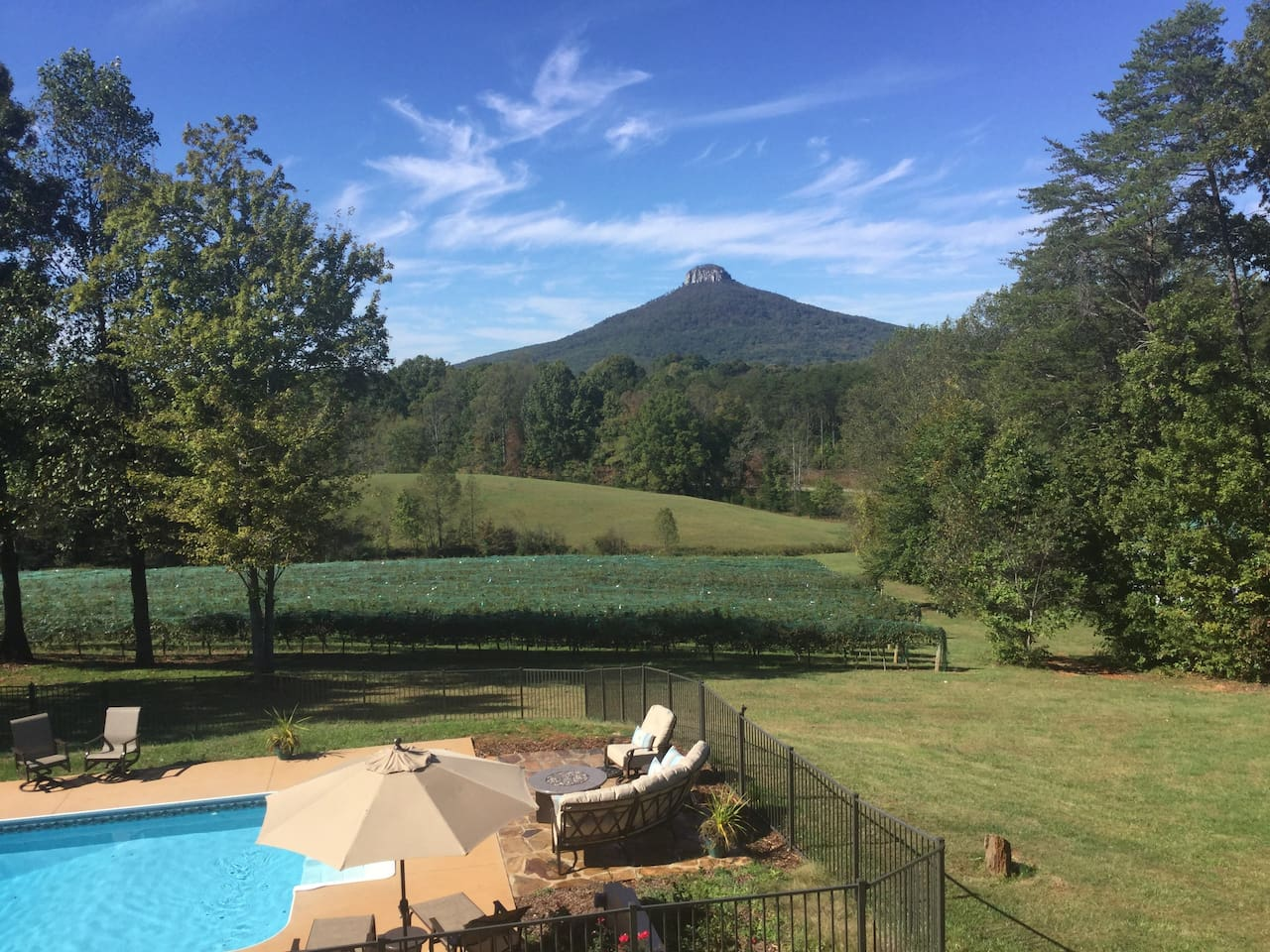 Come stay at Pilot Mountain Vineyards