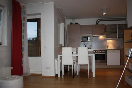 Modern apartment with sauna, jacuzzi and terrace - Pärnu - อพาร์ทเมนท์
