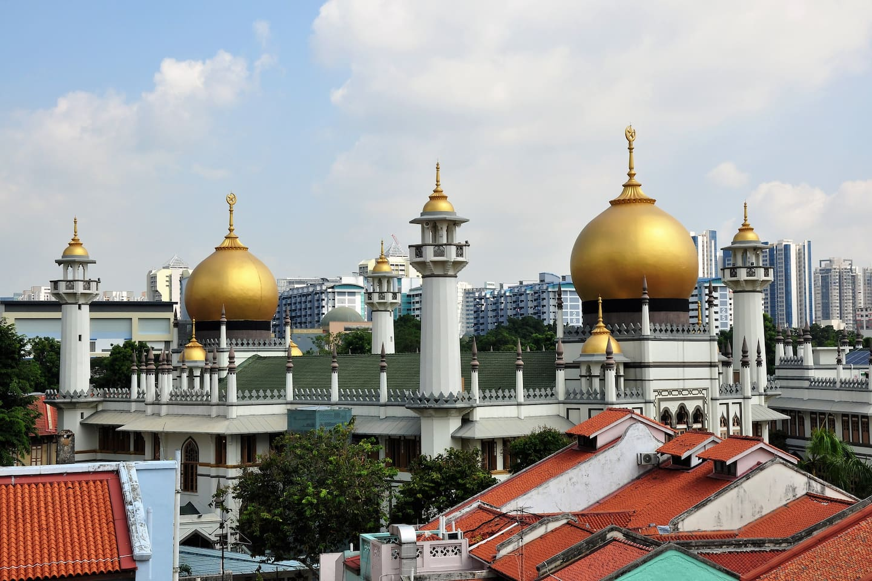 Masjid Sultan from Rootop Terrace