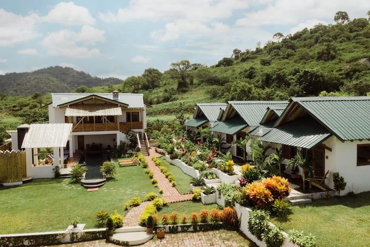 Villas Los Olivos - Come and Discover Paradise!