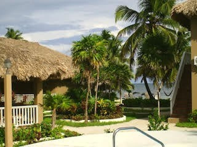 View of beach from resort
