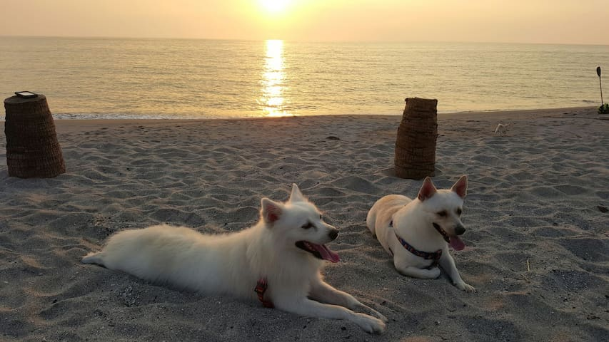 Club Monet Beachfront Resort - Cabangan - 家庭式旅館