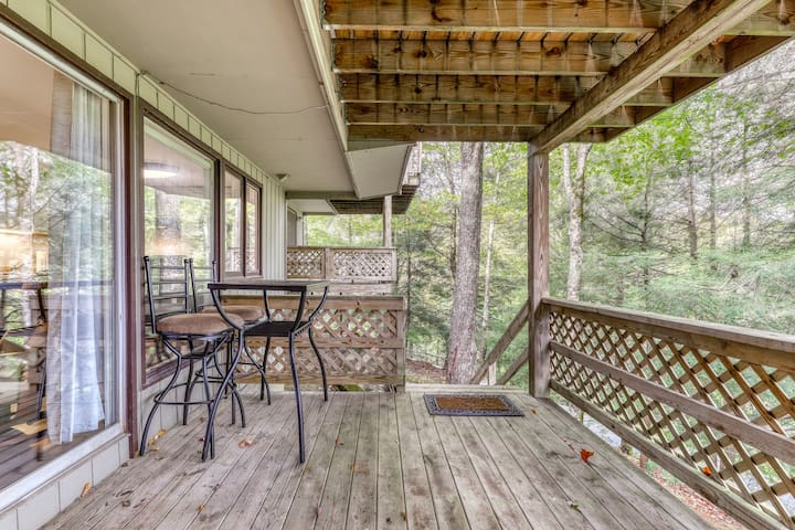Dog-friendly condo at the base of Sugar Mountain w/ balcony & porch swing!