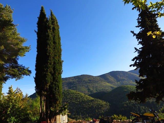 Vue contre forts Mt Ventoux et cyprès. Beaux jardins à votre disposition.