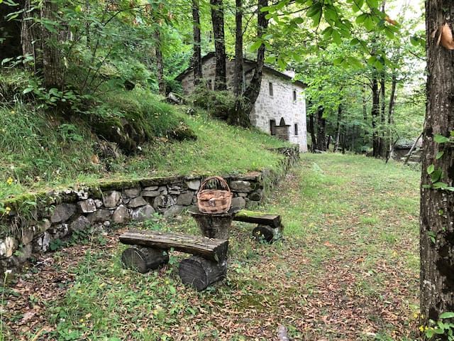 Off-the-grid Stonehouse in the Forest