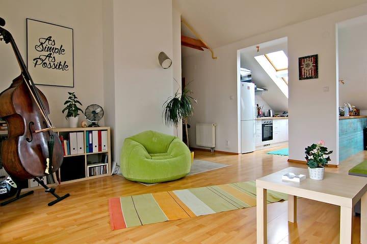 Cozy attic apartment in heart of Košice!