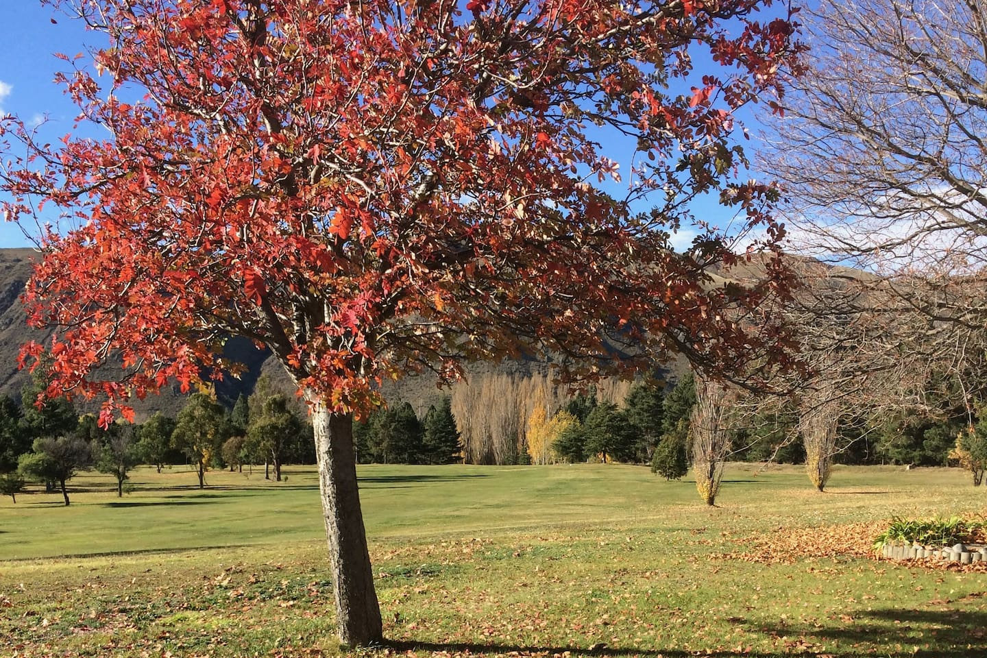 Autumn view of the golf course from the lounge