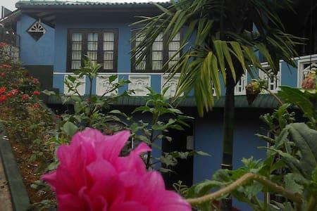 hotel rej - Hatton - Domek parterowy