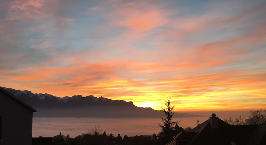 Peaceful Retreat Vevey Montreux - Blonay - Appartement