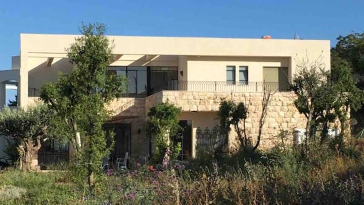 Luxury villa Hanita