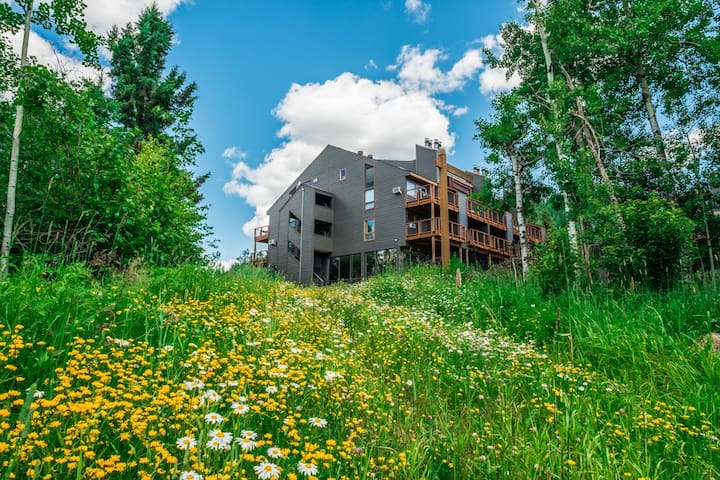 Caribou Highlands Alpine 111A is a cozy Lutsen vacation condo located at Caribou Highlands Lodge in the Superior National Forest