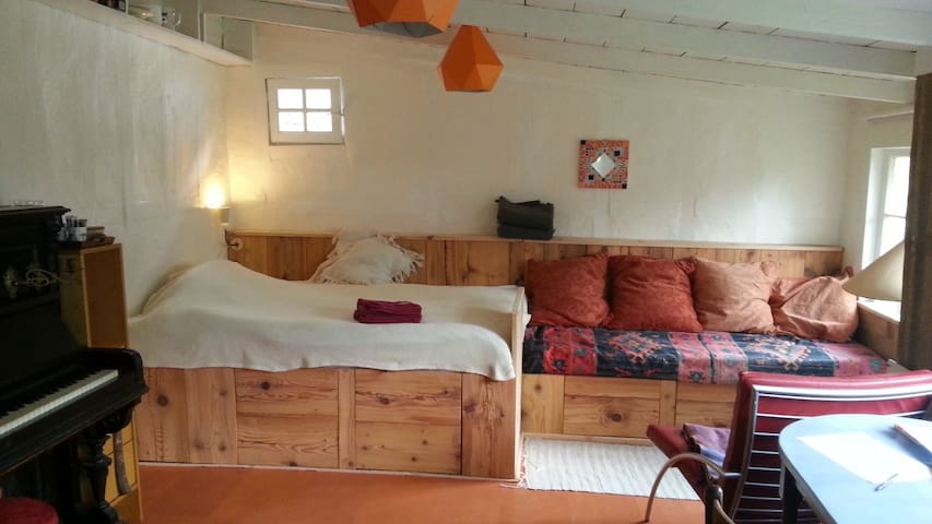 Cosy Amstel guesthouse with garden + free parking