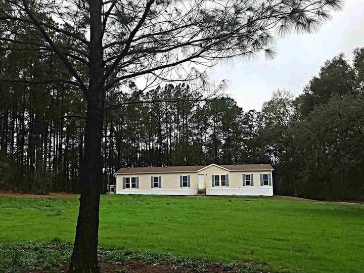 Beautiful house nestled in 6 Acre woodlands .