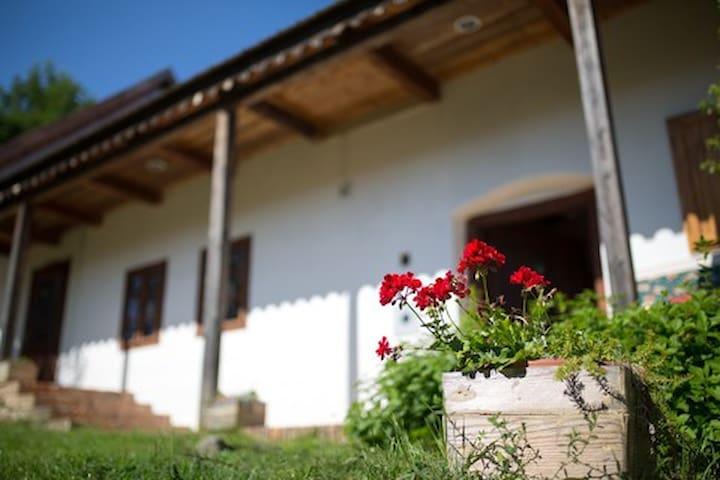 Árdai Vendégház-Alsó apartman. Terényi hagyomány.