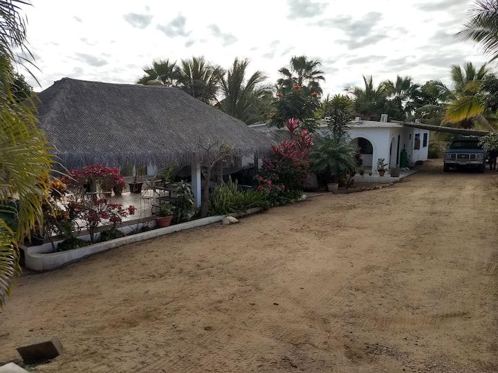 Casa Paraiso huge patio with palapa