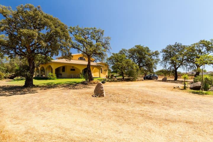 Bella villa nella periferia di pula - Pula - Villa